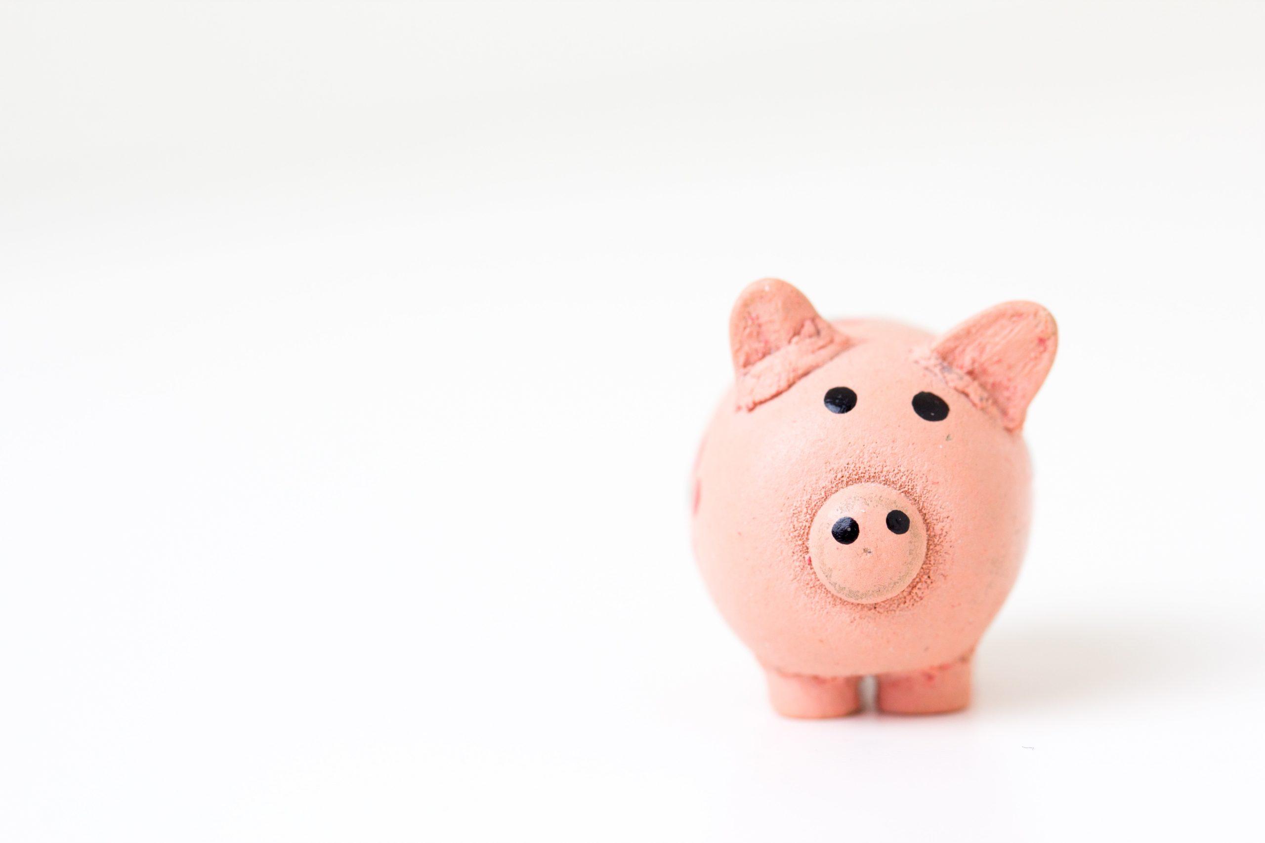 Planning an Effective Budget